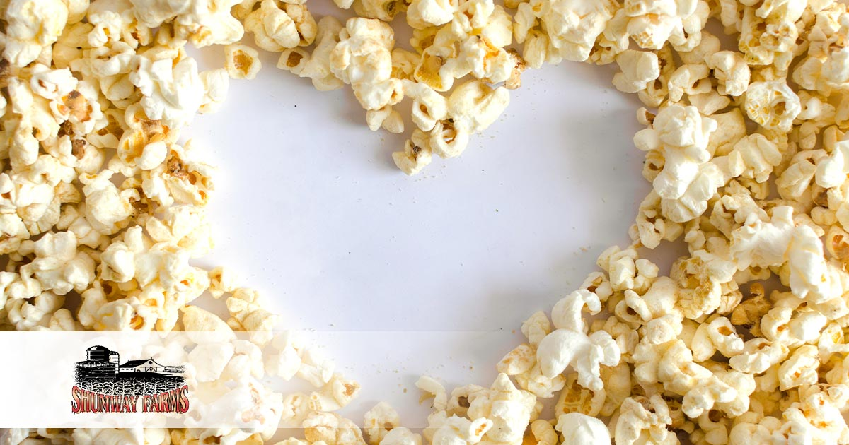 Is Popcorn Keto Everything You Need To Know